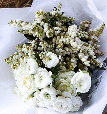 flores_conocenos
